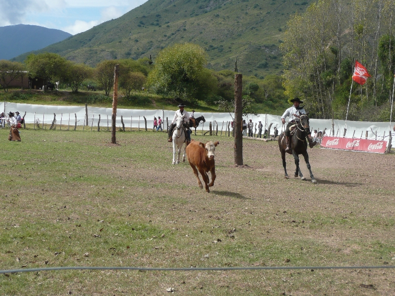 Horse Riding with Argentinian Gauchos in Salta Argentina Trip Picture