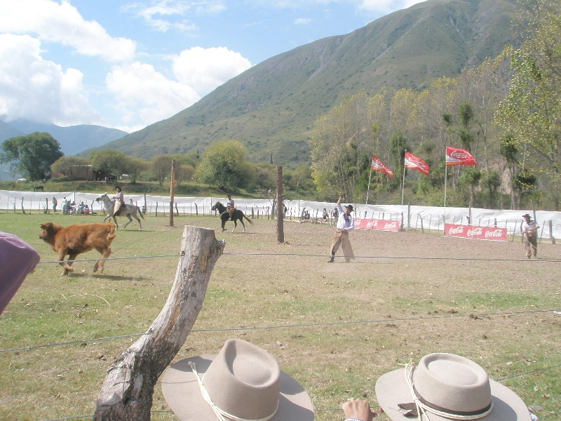 Horse Riding with Argentinian Gauchos in Salta Argentina Photo Sharing