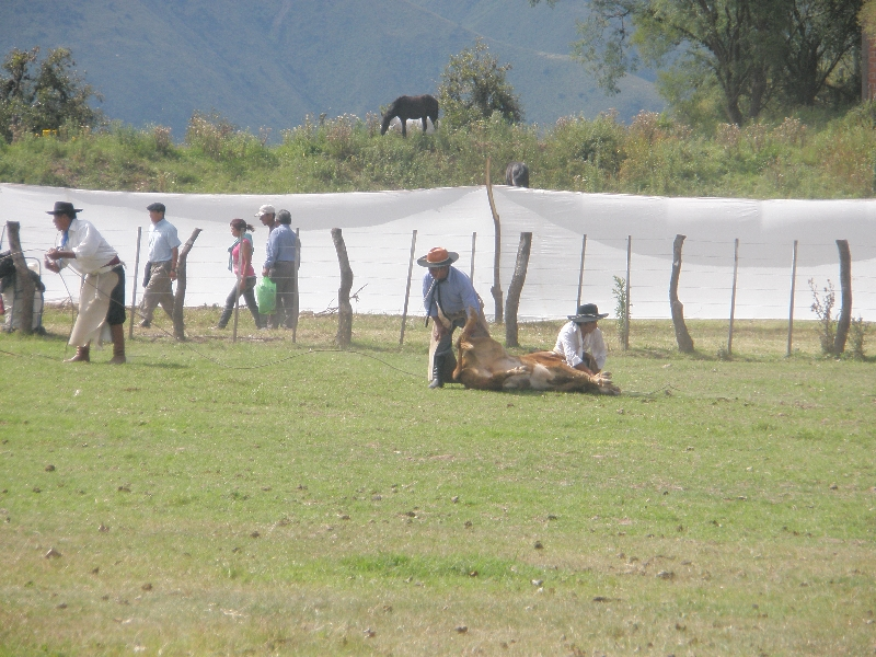 Horse Riding with Argentinian Gauchos in Salta Argentina Information