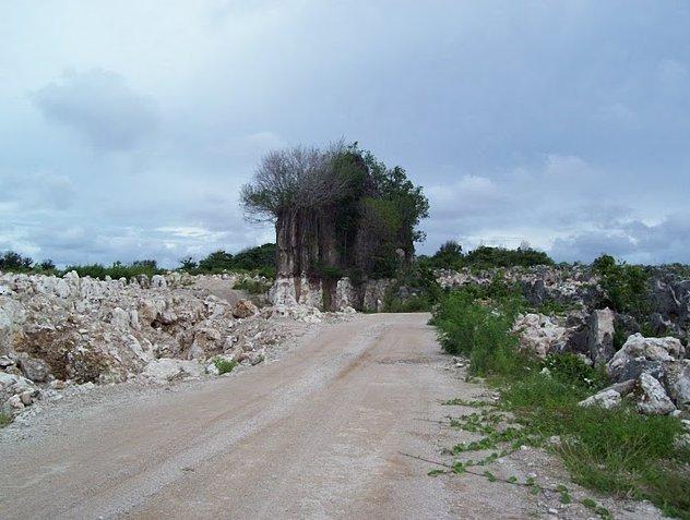 Nauru Island Pictures Yaren Story Sharing