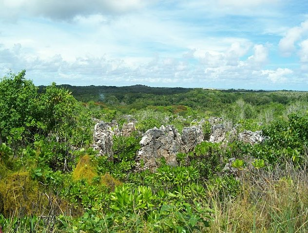 Yaren Nauru Diary Experience