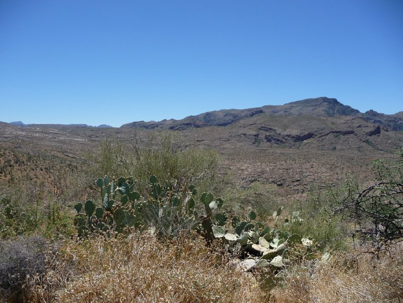 Apache Trail AZ Apache Junction United States Holiday Adventure