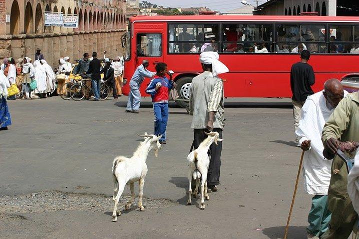 Asmara Eritrea Pictures Vacation Information