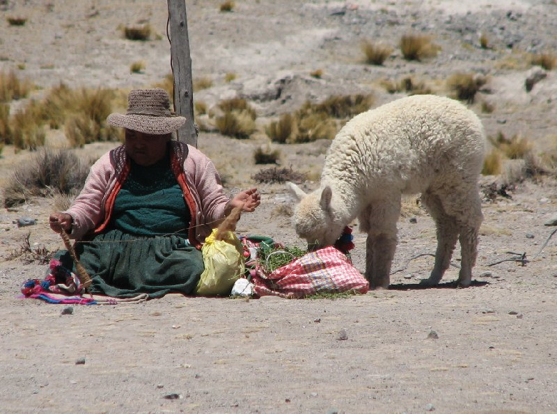 From Arequipe to Chivay and Colca Canyon Peru Diary Adventure
