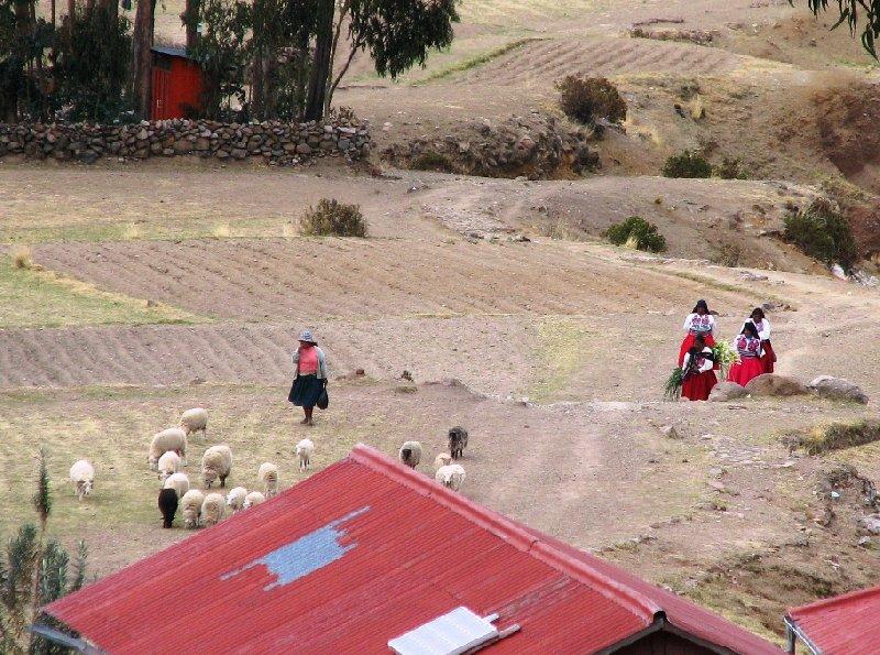 Isla Amantani Peru Diary Tips