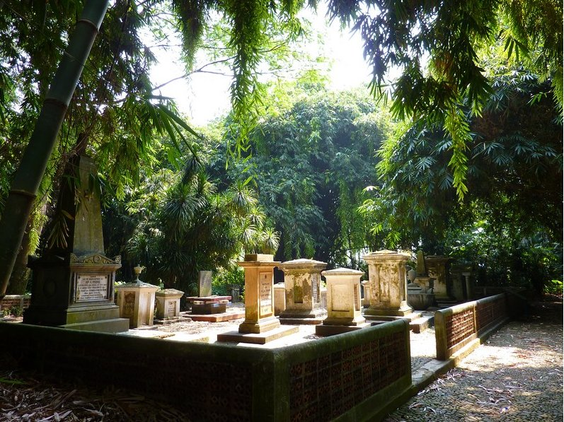 Bogor Botanical Garden Indonesia Travel Gallery