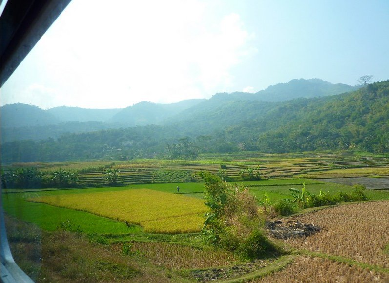 Travel to Yogyakarta Indonesia Review