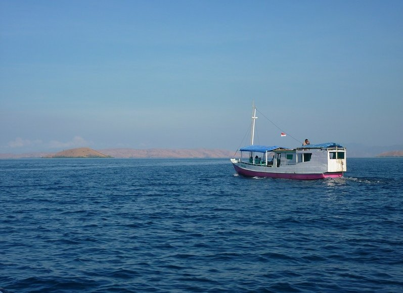Komodo dragon habitat on Rinca island Indonesia Diary Picture