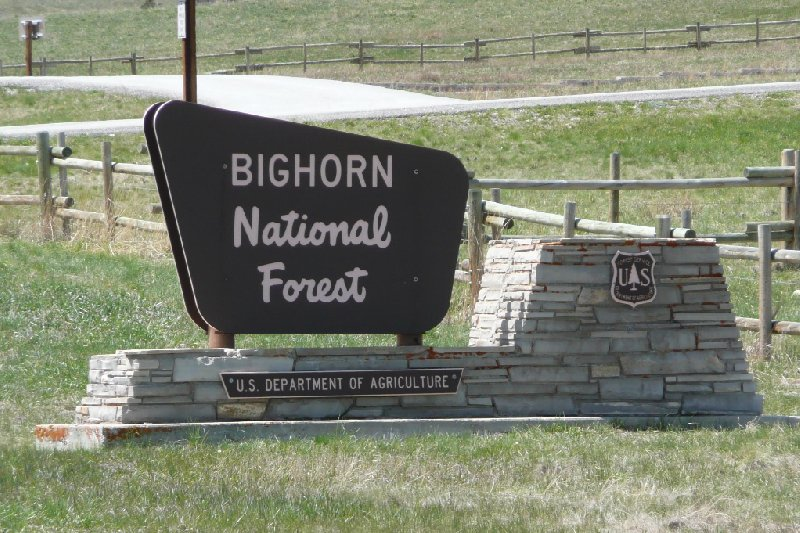 Bighorn National Forest Buffalo WY United States Diary Picture