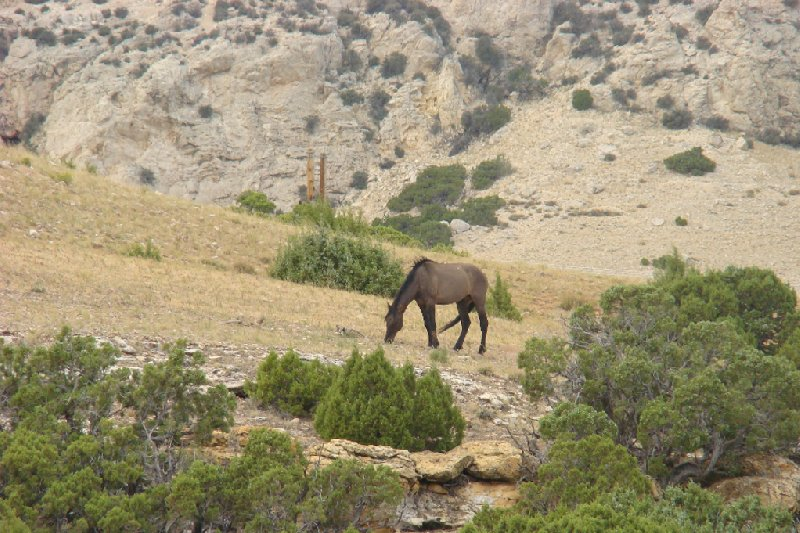 Ten Sleep Wyoming United States Trip Photo