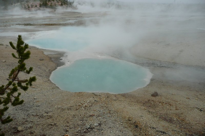 Yellowstone National Park United States Travel Diary