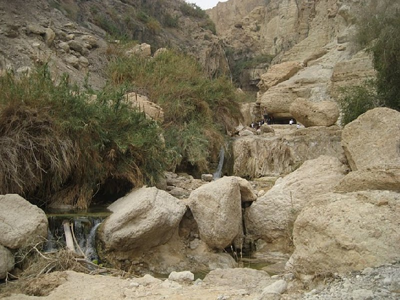 Ein Gedi Nature Reserve Israel Diary Experience