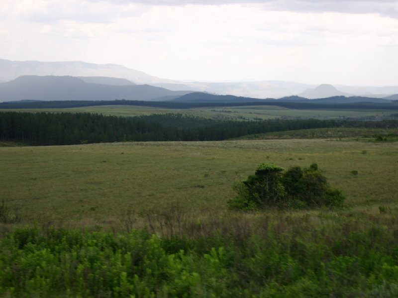 Kruger National Park Nelspruit South Africa Travel Picture