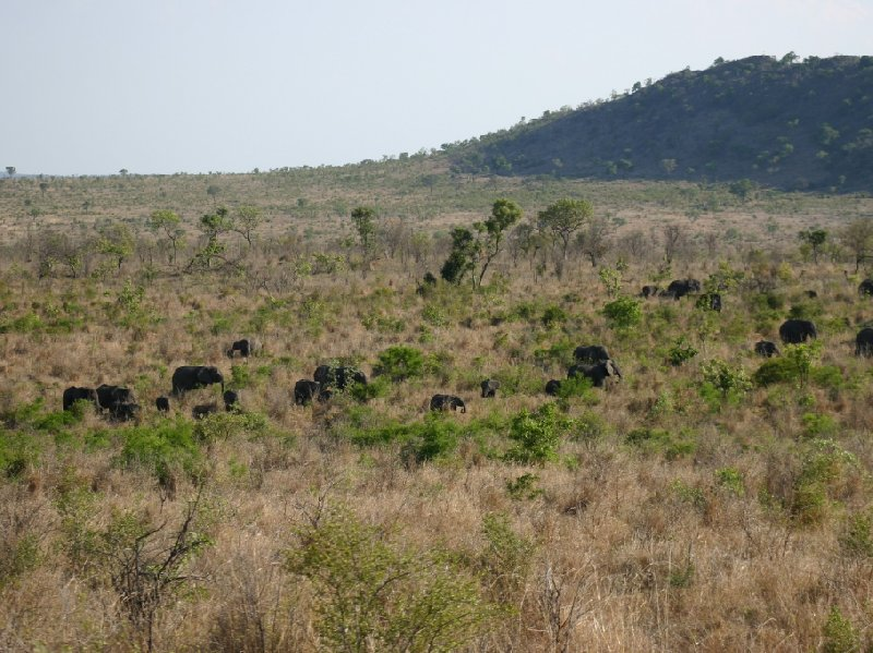 Kruger National Park Nelspruit South Africa Holiday Tips