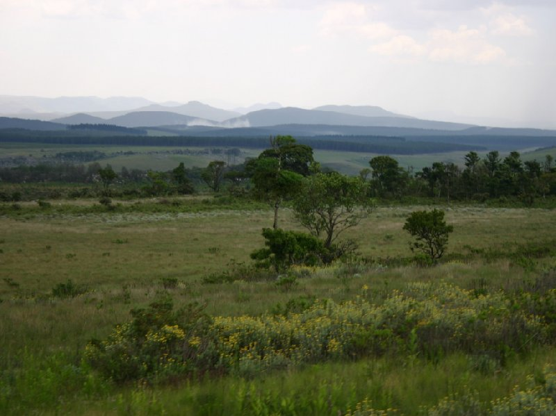Kruger National Park Nelspruit South Africa Diary