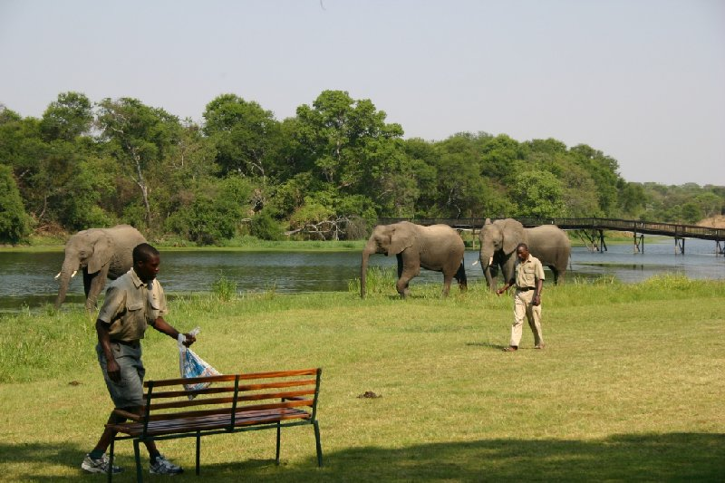 Photo Gweru Antelope Park center