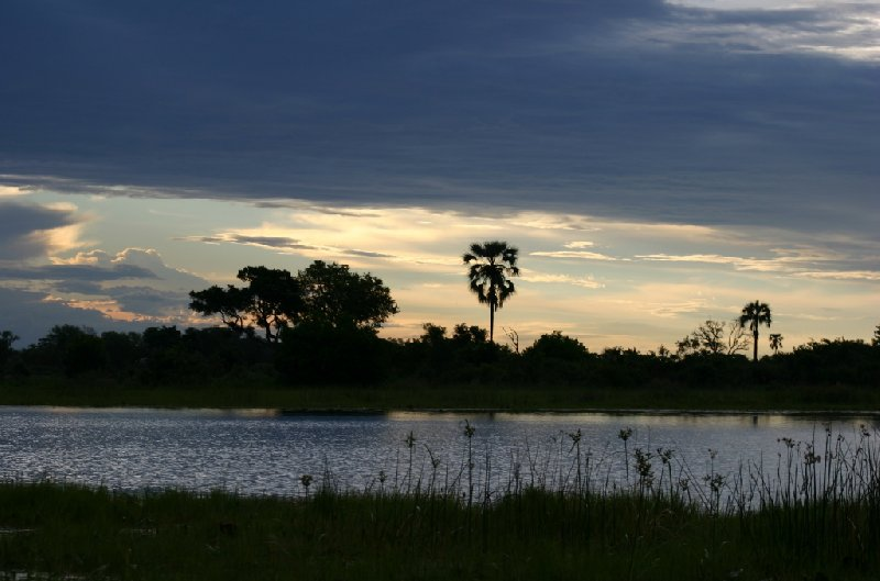 Chobe National Park Botswana Kasane Blog Experience
