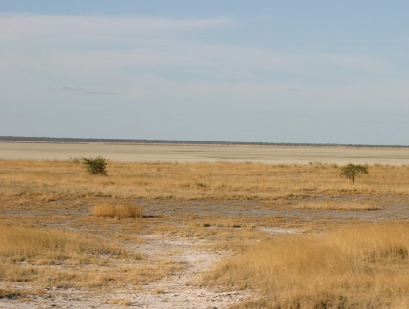 Etosha National Park Namibia Okaukuejo Diary Photo