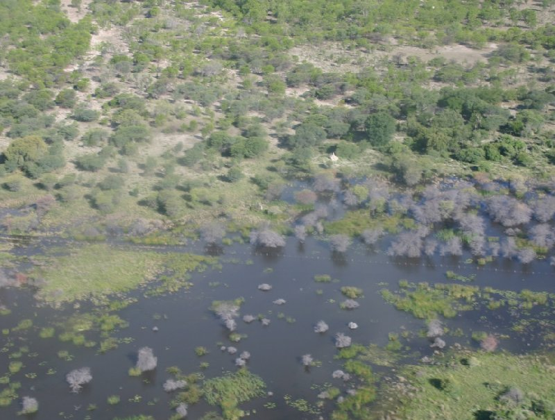 Okavango Delta safari tour Maun Botswana Photographs