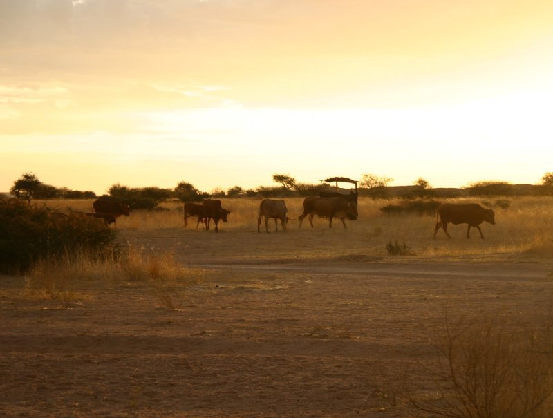 Usakos Namibia Travel Review