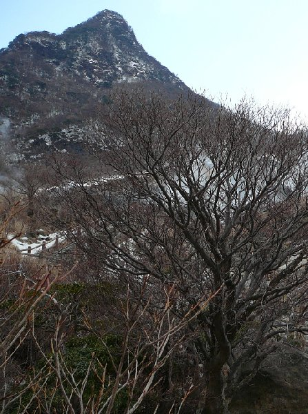 Hakone Japan Trip Experience