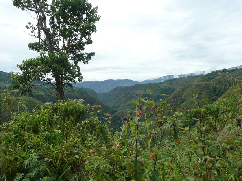 San Agustin Colombia Blog Review