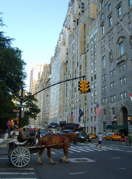 Autumn Stay in New York United States Review Sharing