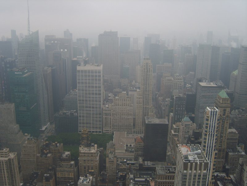 Autumn Stay in New York United States Diary Information