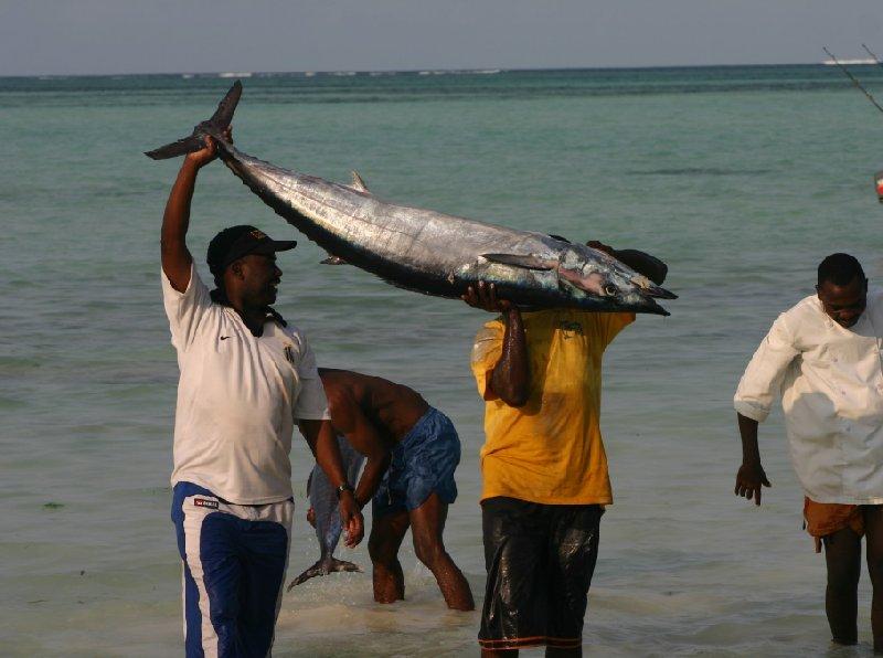 Pongwe Beach Resort Zanzibar Tanzania Album Pictures