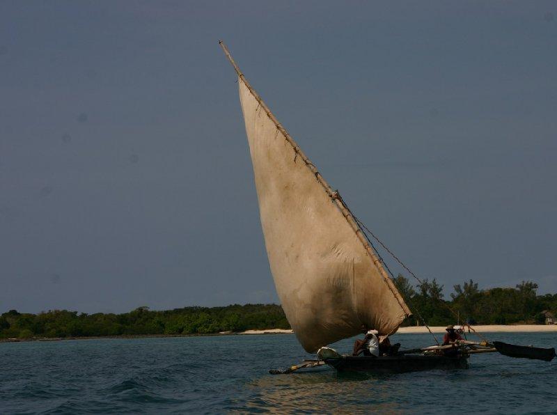 Pongwe Tanzania