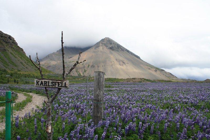 Jökulsárlón Iceland Blog Pictures
