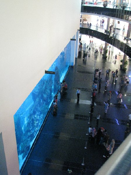 Photo Dubai Mall Pictures acquarium