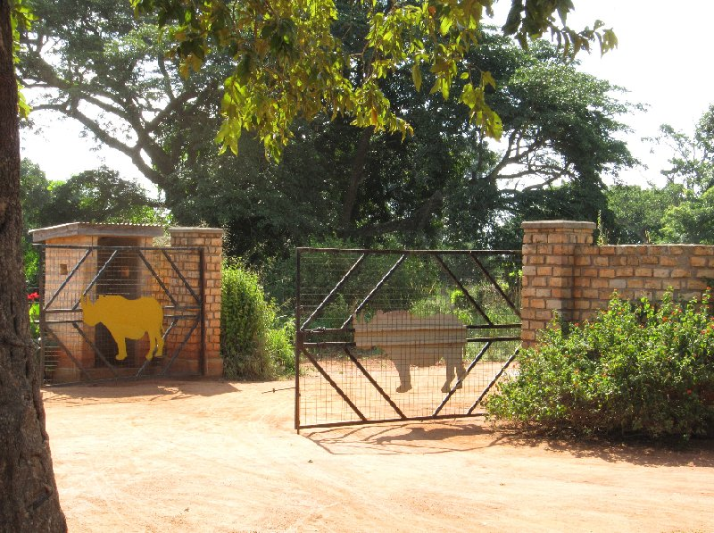 Photo Ziwa Rhino Sanctuary Uganda leading