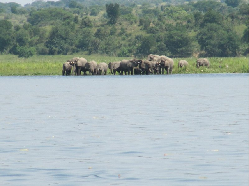 Photo Uganda tours and safaris Masindi