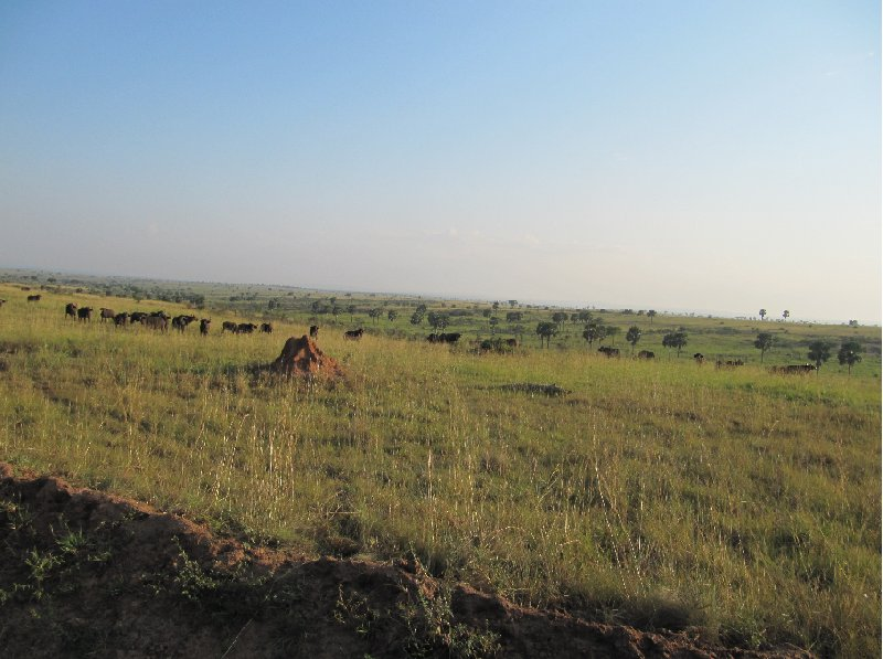 Masindi Uganda Diary Photo
