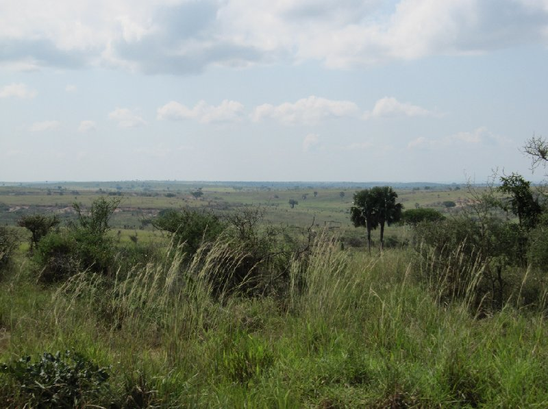Uganda tours and safaris Masindi Blog Experience