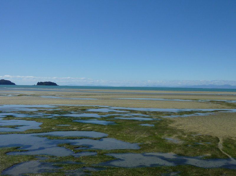 Abel Tasman tours New Zealand Collingwood Review