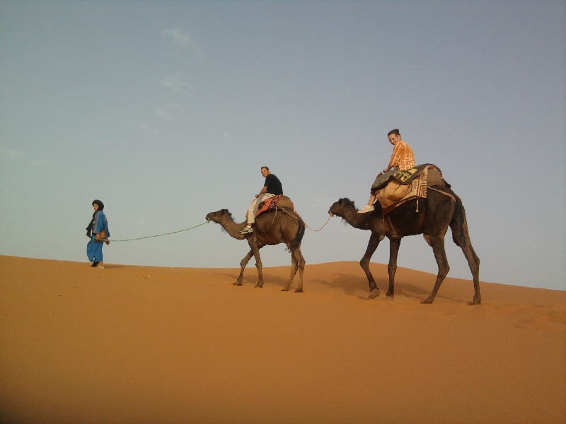 Camel Trek Merzouga dunes, Morocco