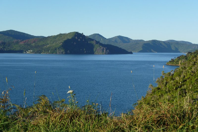 Photo Tour Picton New Zealand entered