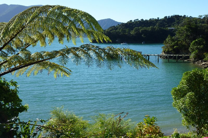 Tour Picton New Zealand Photographs