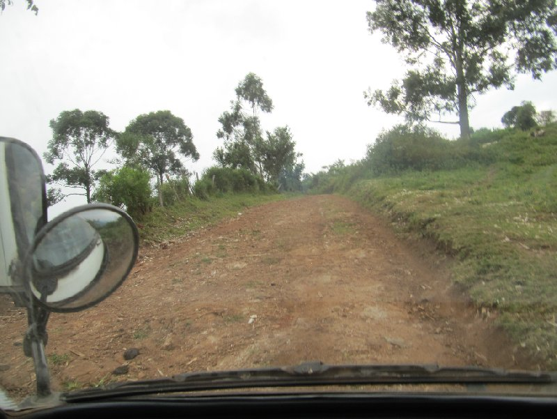 Chimp trekking Uganda Fort Portal Review Photograph