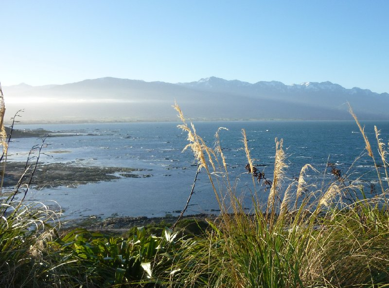 Touring from Kaikoura in Camper New Zealand Holiday Photos