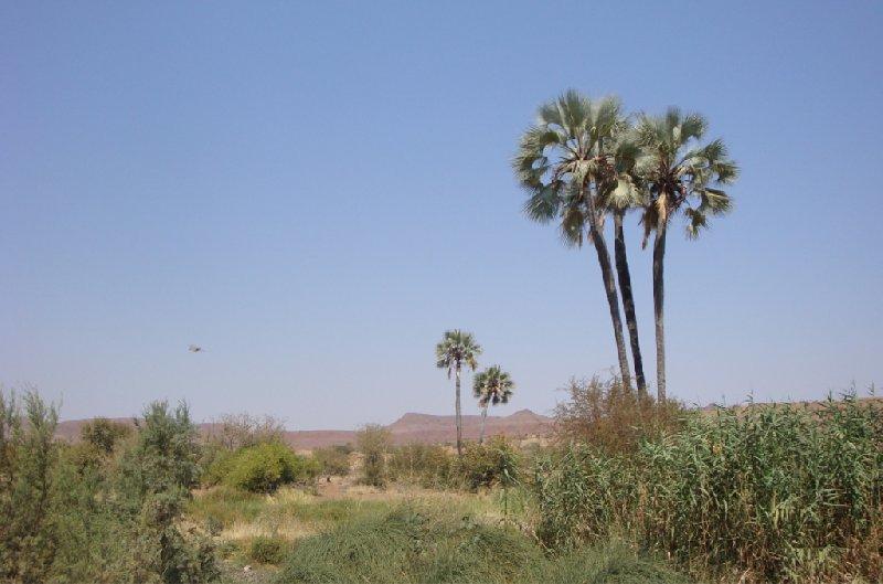 Namibia Kalahari Desert lodge safari Otjiwarongo Experience