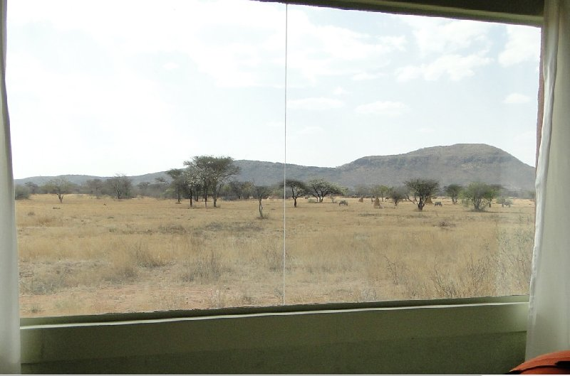 Namibia Kalahari Desert lodge safari Otjiwarongo Trip Photo