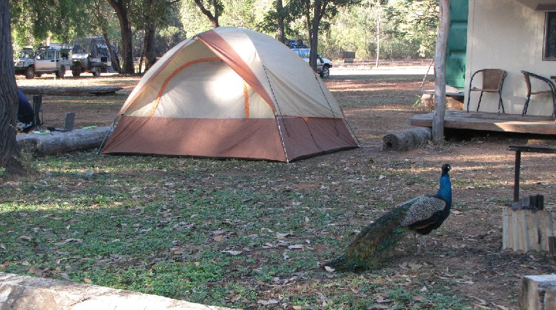 Cape York camping tour from Cairns Australia Travel Tips