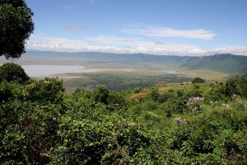 Photo Ngorongoro crater safari Tanzania safari