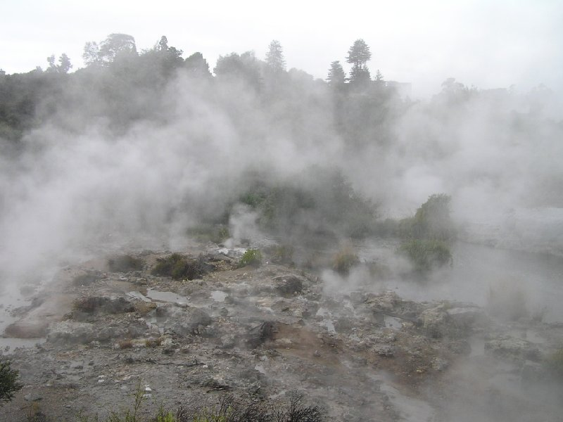 Photo Sightseeing Rotorua touring New Zealand touring