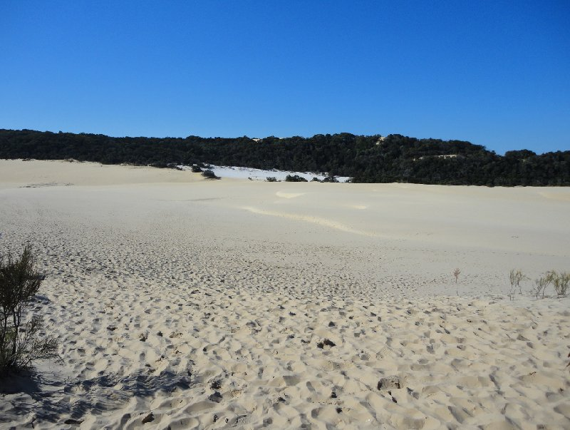 Photo Fraser Island 4wd Tour popular