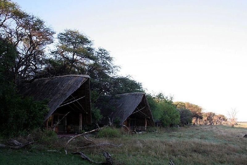 Safari Hwange Zimbabwe Trip