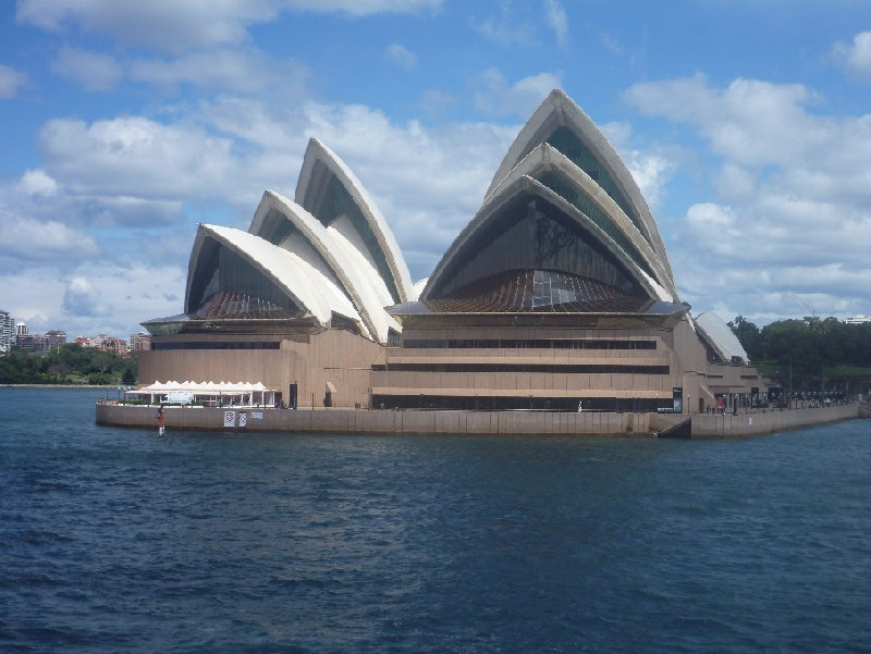 Photo Sydney Whale Watching Tour adventure
